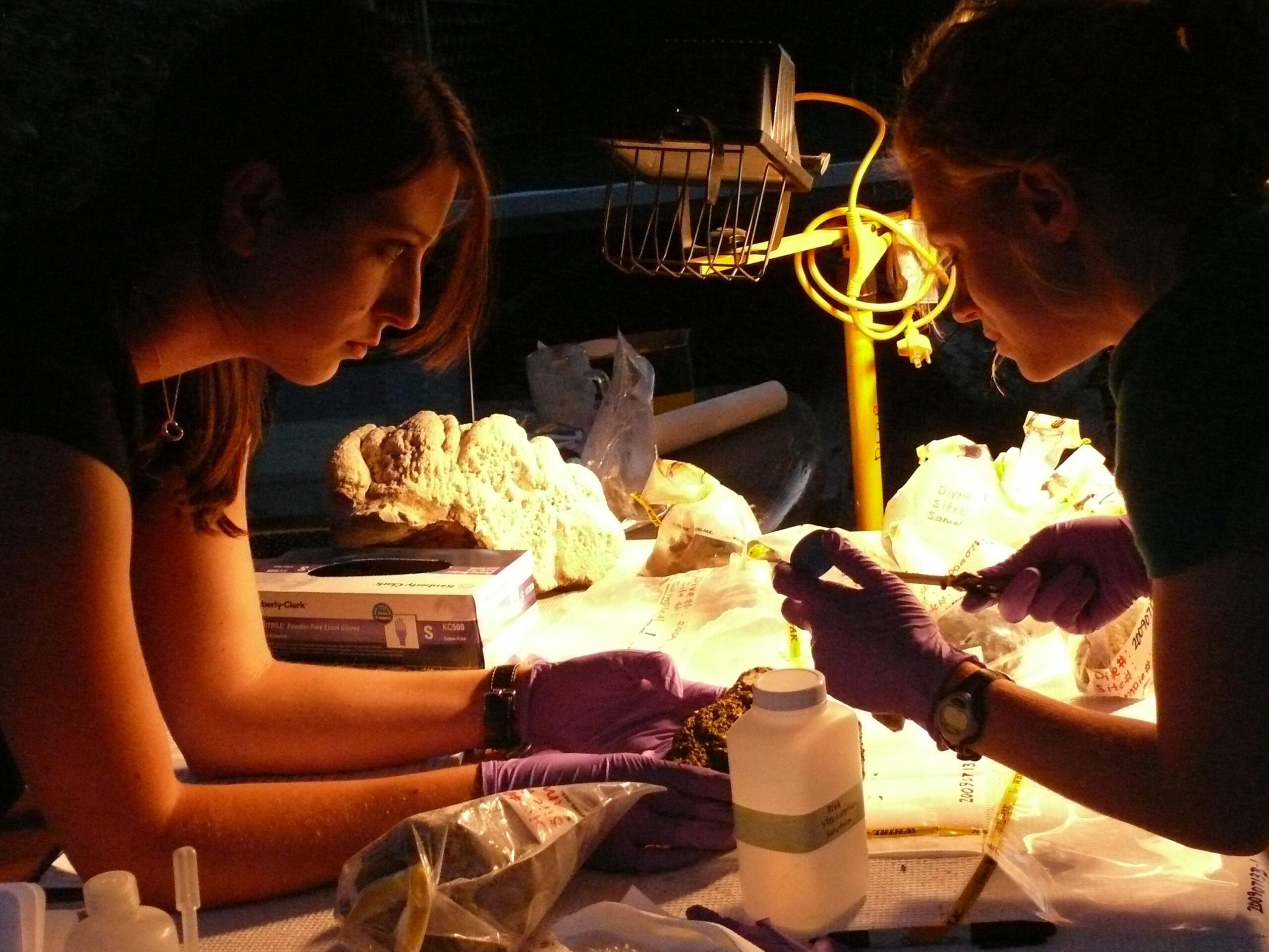 Zena Cardman in a lab.